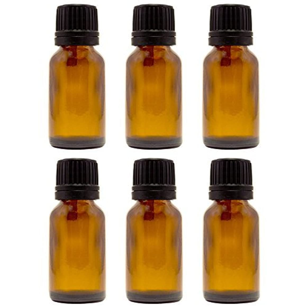 教育する荒涼としたそれ15 ml (1/2 fl oz) Amber Glass Bottle with Euro Dropper (6 Pack) [並行輸入品]