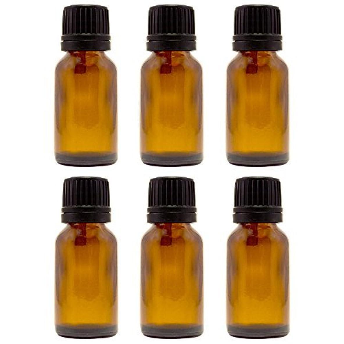 繰り返したインカ帝国エンジニアリング15 ml (1/2 fl oz) Amber Glass Bottle with Euro Dropper (6 Pack) [並行輸入品]