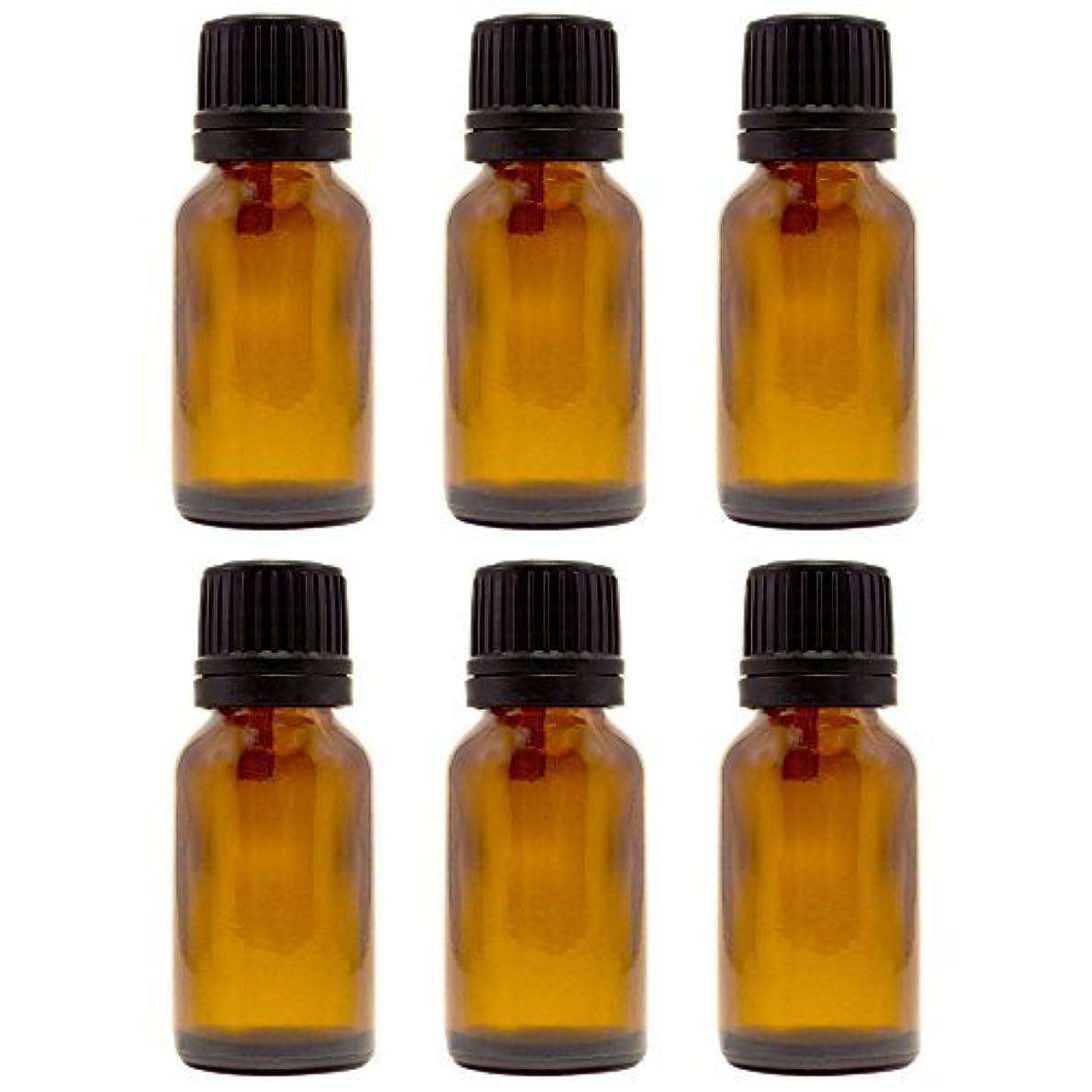 前置詞約束する縮約15 ml (1/2 fl oz) Amber Glass Bottle with Euro Dropper (6 Pack) [並行輸入品]