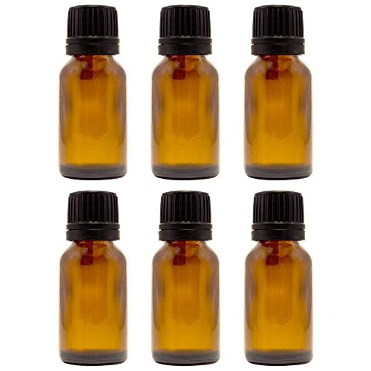 アウトドアコカイン枯れる15 ml (1/2 fl oz) Amber Glass Bottle with Euro Dropper (6 Pack) [並行輸入品]