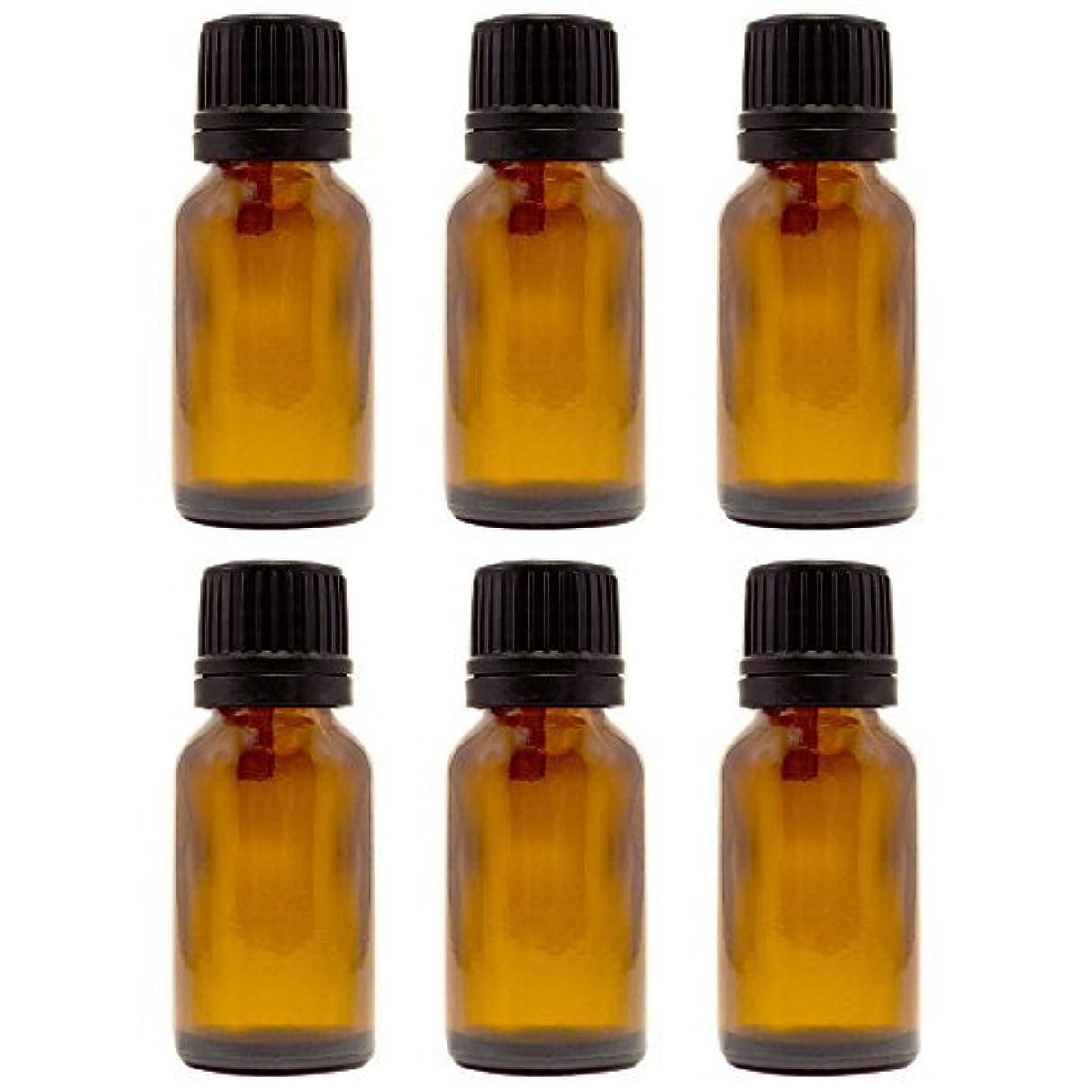 闇関税シャッター15 ml (1/2 fl oz) Amber Glass Bottle with Euro Dropper (6 Pack) [並行輸入品]