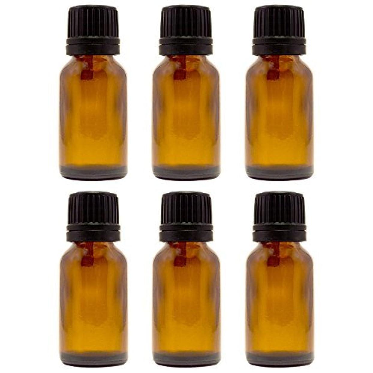 あいにくサーバントラビリンス15 ml (1/2 fl oz) Amber Glass Bottle with Euro Dropper (6 Pack) [並行輸入品]
