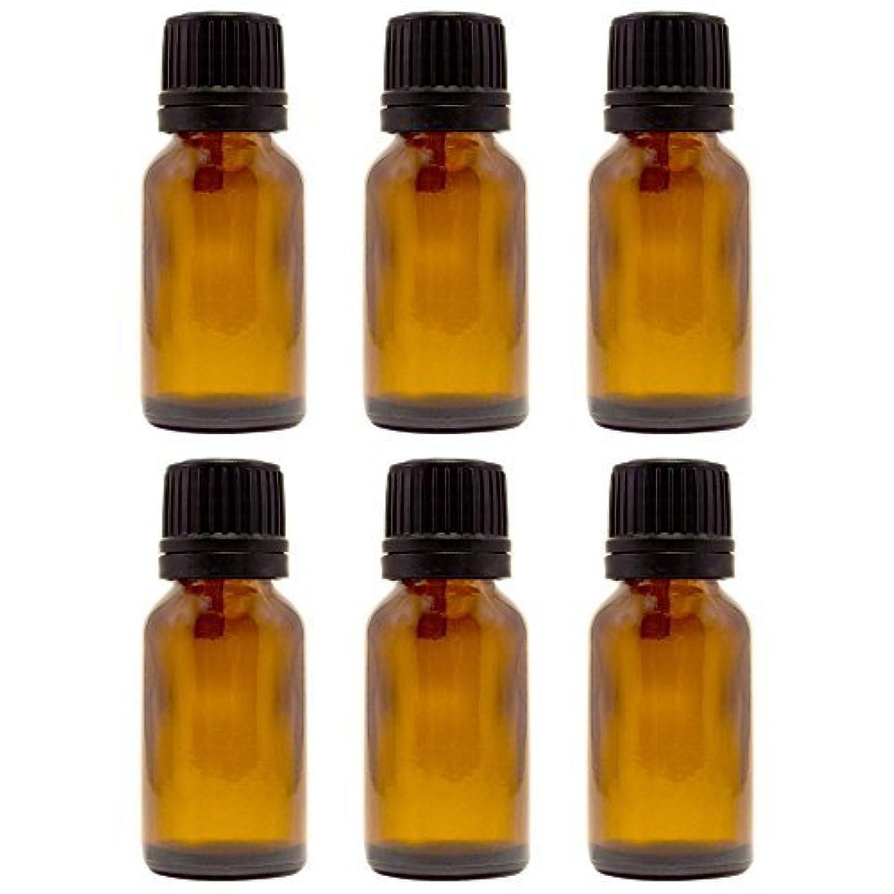 殺人者例示するフォーカス15 ml (1/2 fl oz) Amber Glass Bottle with Euro Dropper (6 Pack) [並行輸入品]