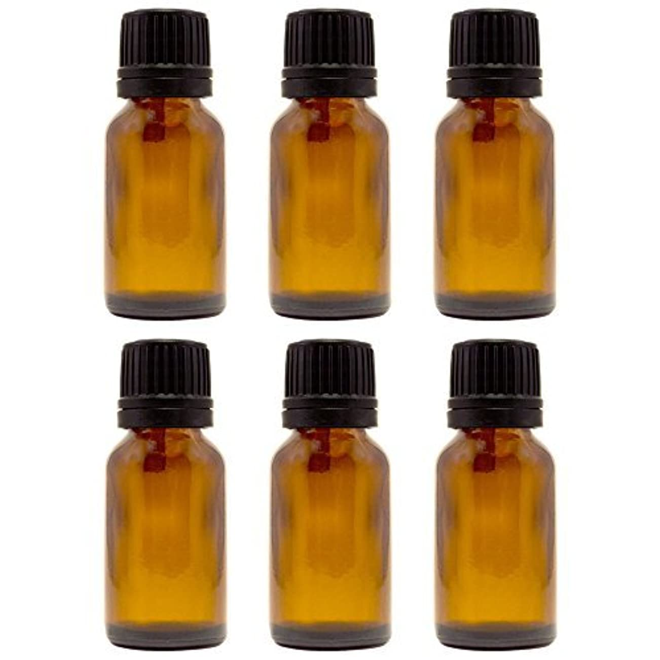 ファイターマニアック真面目な15 ml (1/2 fl oz) Amber Glass Bottle with Euro Dropper (6 Pack) [並行輸入品]