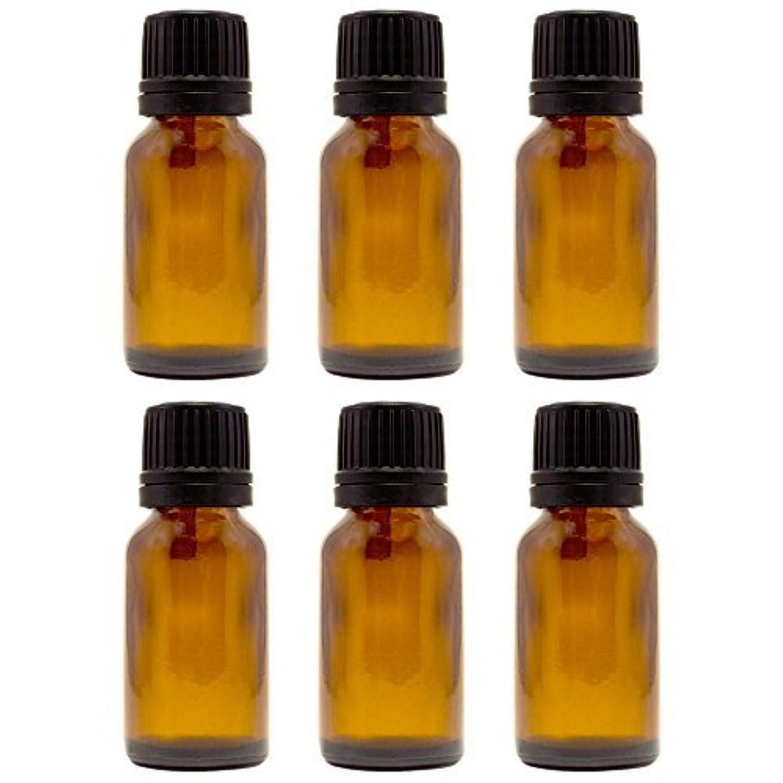 移行する憲法耐えられる15 ml (1/2 fl oz) Amber Glass Bottle with Euro Dropper (6 Pack) [並行輸入品]