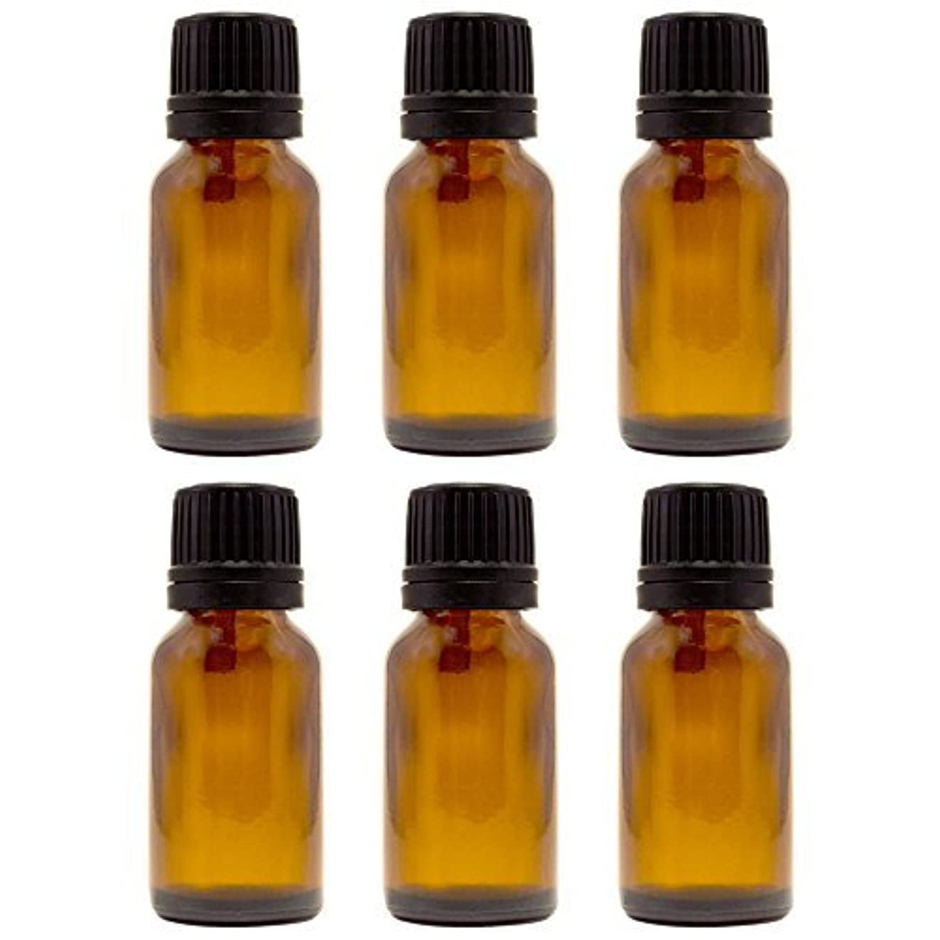 15 ml (1/2 fl oz) Amber Glass Bottle with Euro Dropper (6 Pack) [並行輸入品]