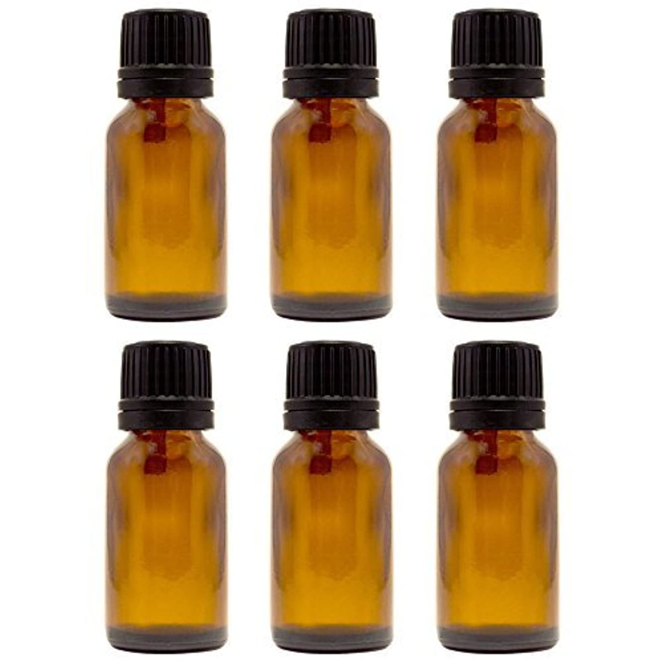 大砲破産見捨てる15 ml (1/2 fl oz) Amber Glass Bottle with Euro Dropper (6 Pack) [並行輸入品]