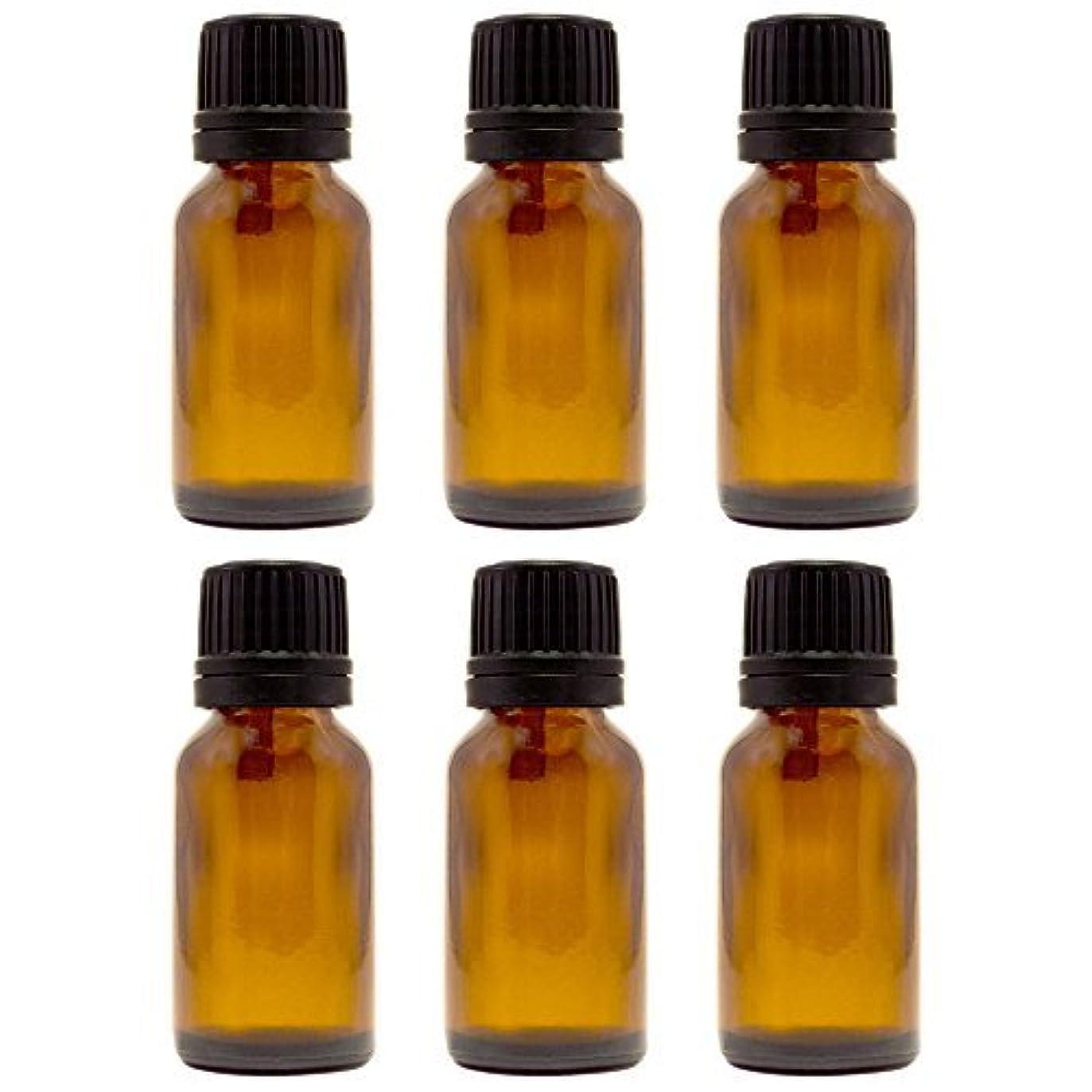 クランシー姿勢メールを書く15 ml (1/2 fl oz) Amber Glass Bottle with Euro Dropper (6 Pack) [並行輸入品]