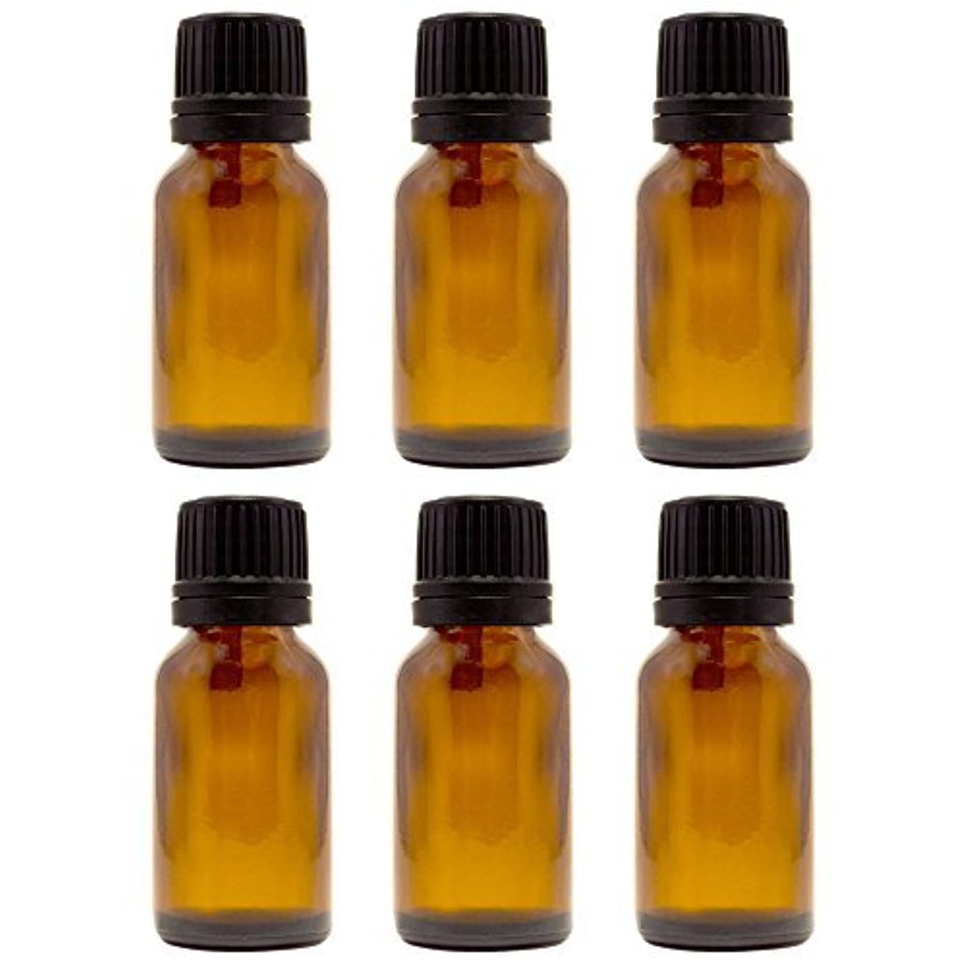 アプライアンス必要コア15 ml (1/2 fl oz) Amber Glass Bottle with Euro Dropper (6 Pack) [並行輸入品]
