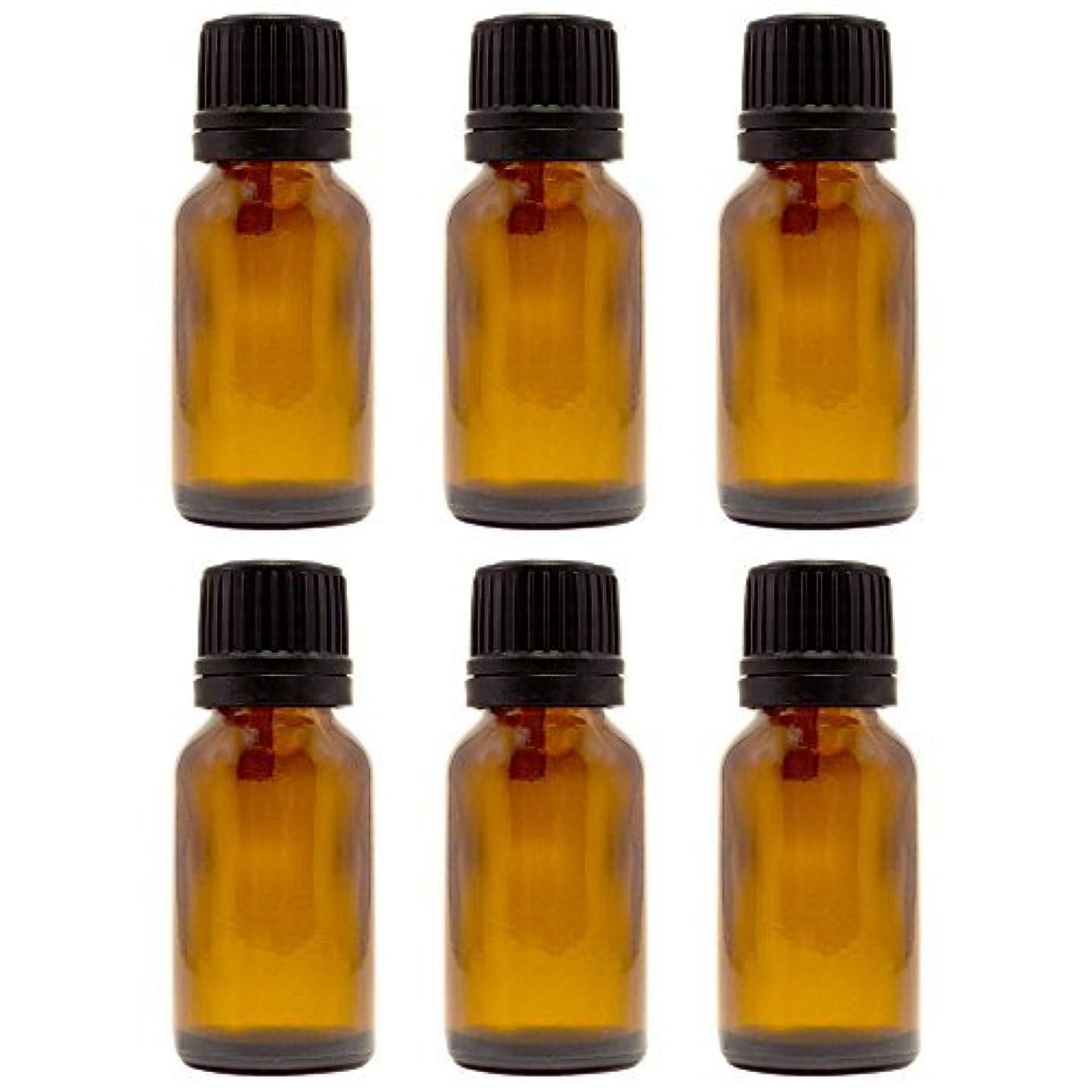 無数の成功縫う15 ml (1/2 fl oz) Amber Glass Bottle with Euro Dropper (6 Pack) [並行輸入品]