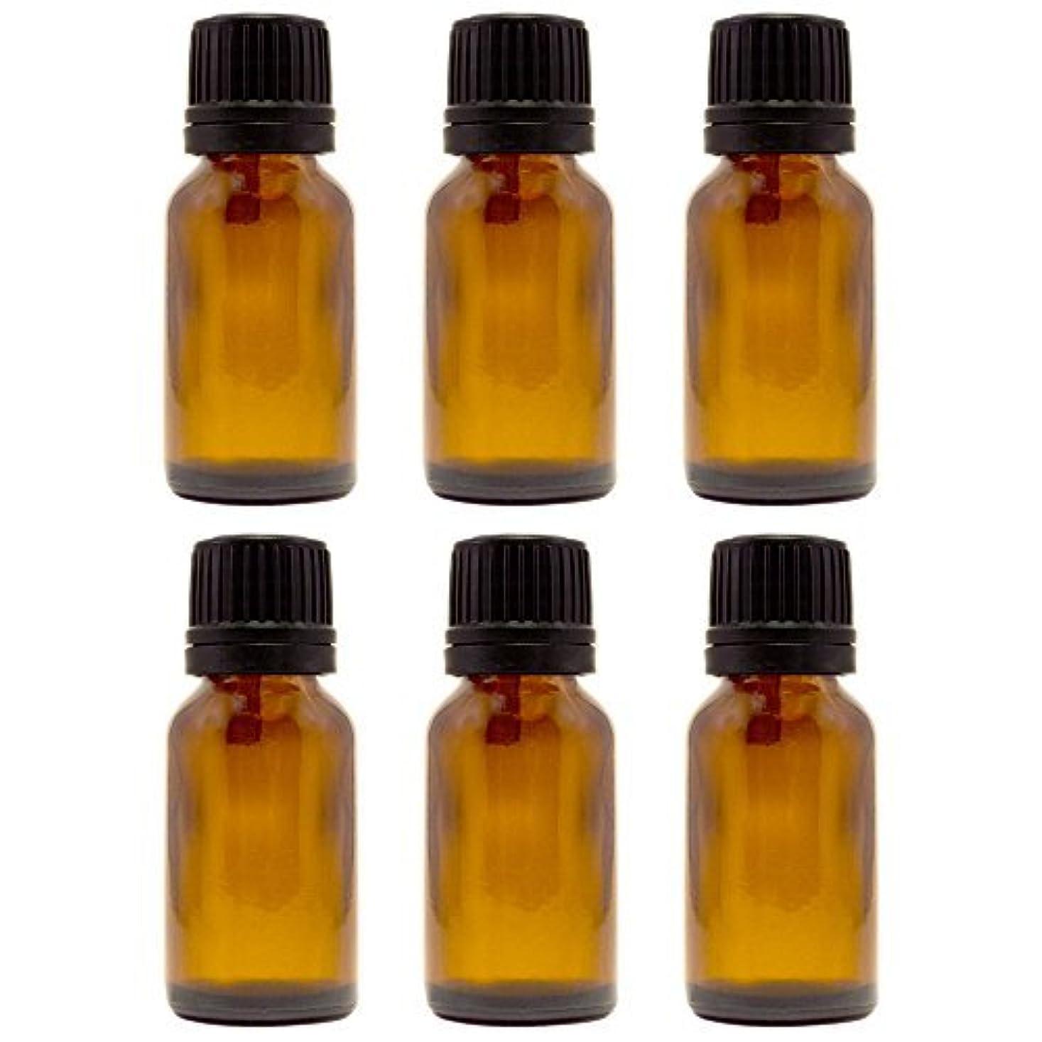 プロットコンピューター嫉妬15 ml (1/2 fl oz) Amber Glass Bottle with Euro Dropper (6 Pack) [並行輸入品]