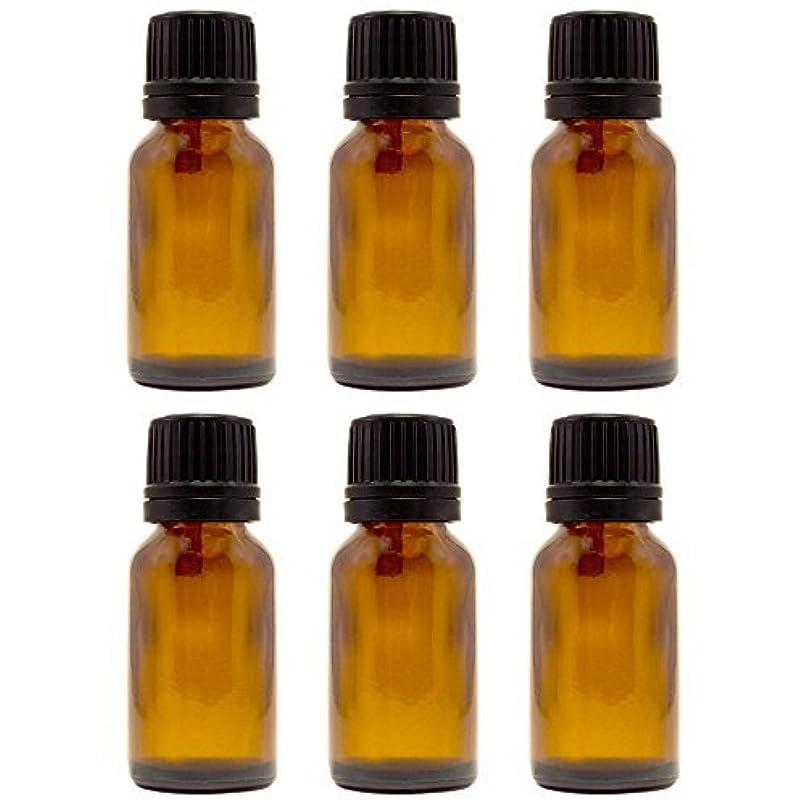 同封する報復ねばねば15 ml (1/2 fl oz) Amber Glass Bottle with Euro Dropper (6 Pack) [並行輸入品]