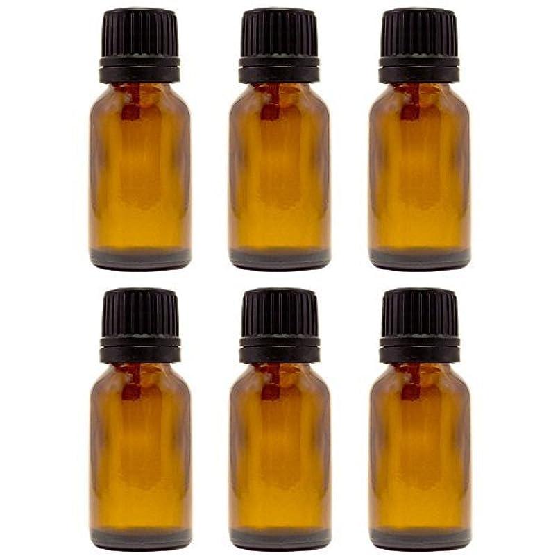 ミル判定発言する15 ml (1/2 fl oz) Amber Glass Bottle with Euro Dropper (6 Pack) [並行輸入品]