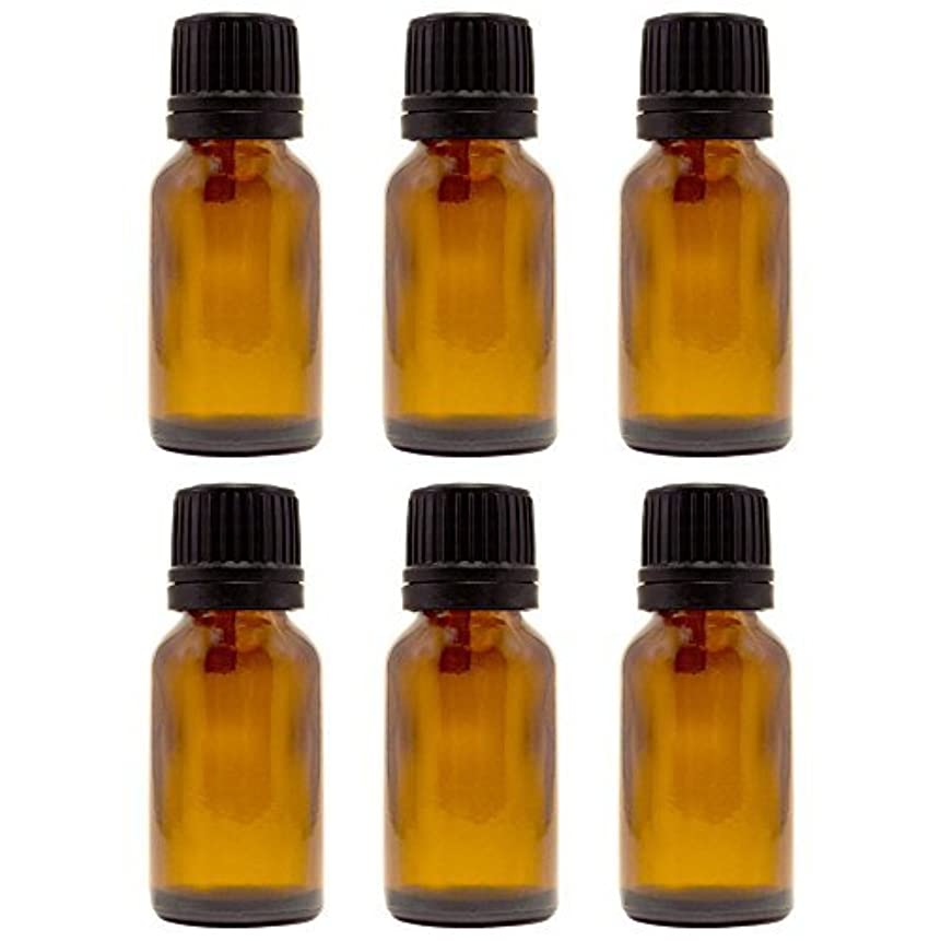 ナット不毛シャイ15 ml (1/2 fl oz) Amber Glass Bottle with Euro Dropper (6 Pack) [並行輸入品]