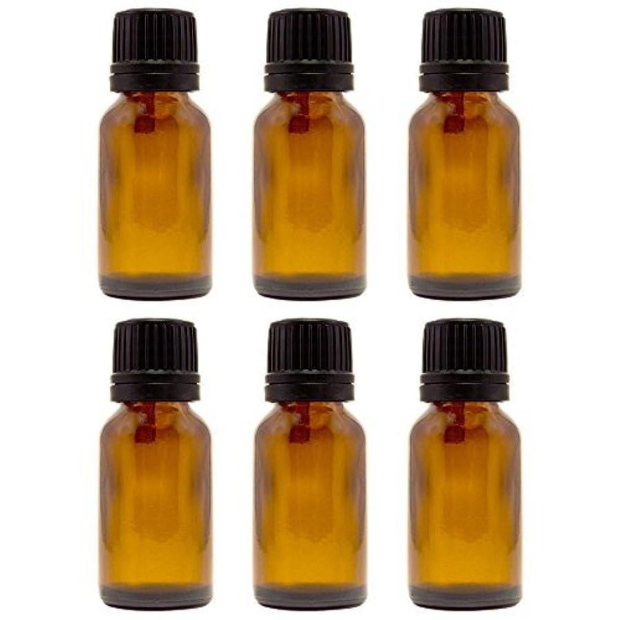 特別な時間後方に15 ml (1/2 fl oz) Amber Glass Bottle with Euro Dropper (6 Pack) [並行輸入品]