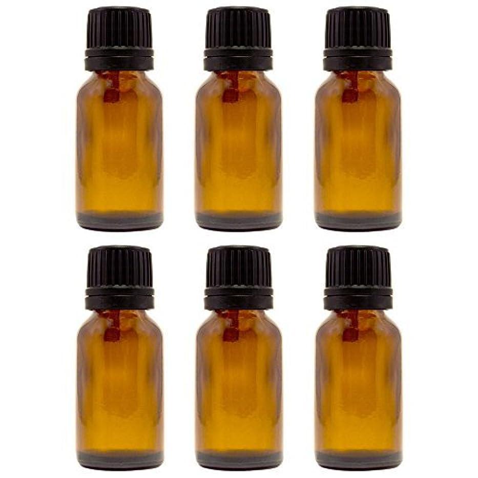 ペインギリックいじめっ子エンジニア15 ml (1/2 fl oz) Amber Glass Bottle with Euro Dropper (6 Pack) [並行輸入品]