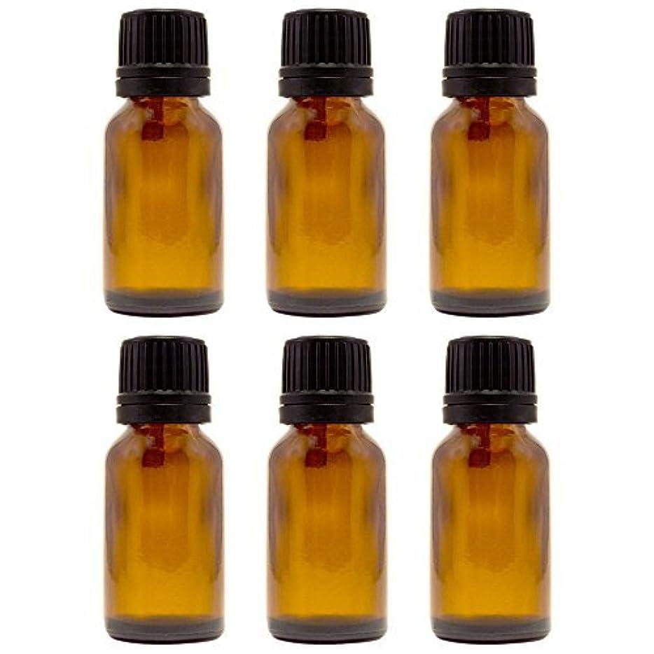 ハシーバス罪人15 ml (1/2 fl oz) Amber Glass Bottle with Euro Dropper (6 Pack) [並行輸入品]