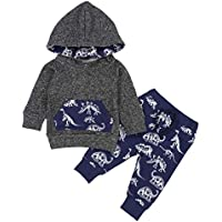 Toddler Infant Baby Boys Dinosaur Long Sleeve Hoodie Tops Sweatsuit Pants Winter Outfit Set