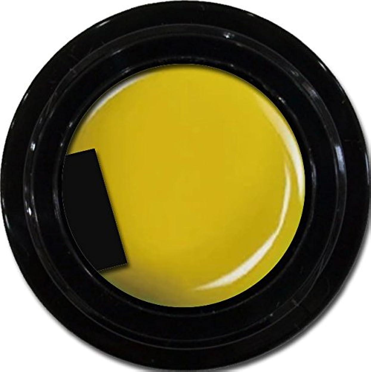 カリキュラムバーガー五カラージェル enchant color gel M603 IndianYellow 3g/ マットカラージェル M603 インディアンイエロー 3グラム