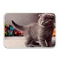 3Dプリント染め バスルームカーペット ドアマット ト シャワーマット 吸収性キッチンドアカーペット 子猫ブリトン灰色猫