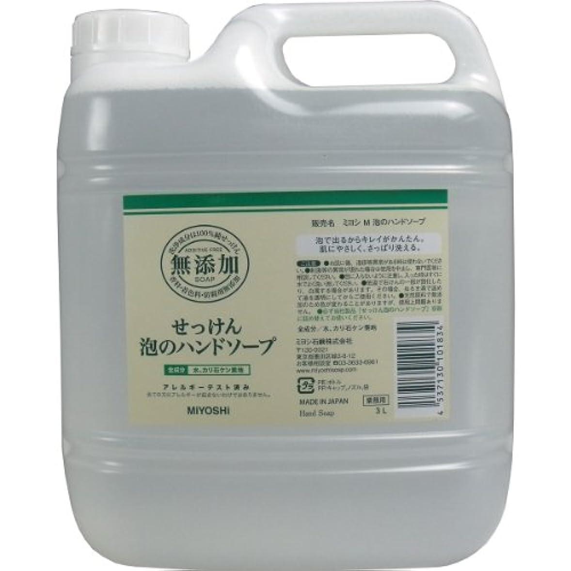 浴室野菜共役【セット品】無添加せっけん泡のハンドソープ 3000ml ×3個