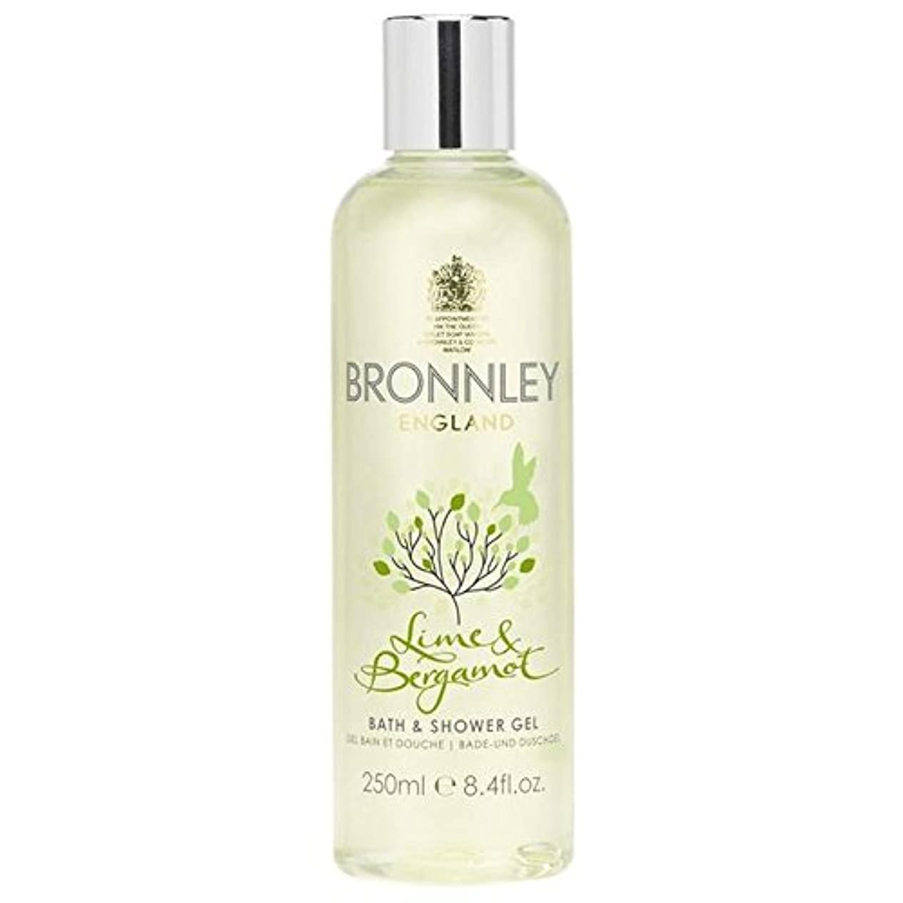 舞い上がる苦情文句胴体Bronnley Lime & Bergamot Bath & Shower Gel 250ml (Pack of 6) - ライム&ベルガモットバス&シャワージェル250ミリリットル x6 [並行輸入品]