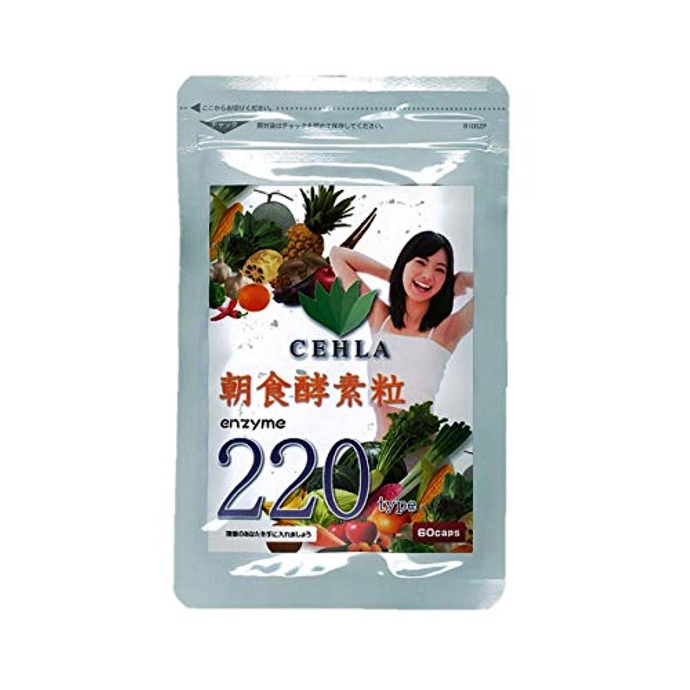 準備した優雅三番セーラ朝食酵素粒エンザイム220種