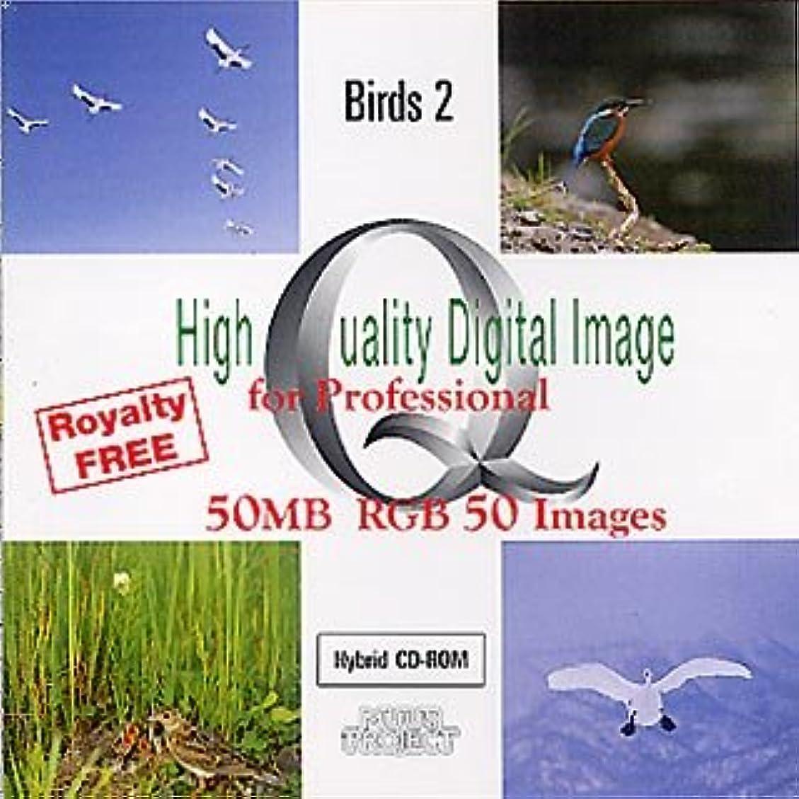 High Quality Digital Image for Professional Birds 2
