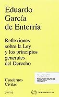 Reflexiones sobre la Ley y los principios generales del Derecho ( Papel + e-book )