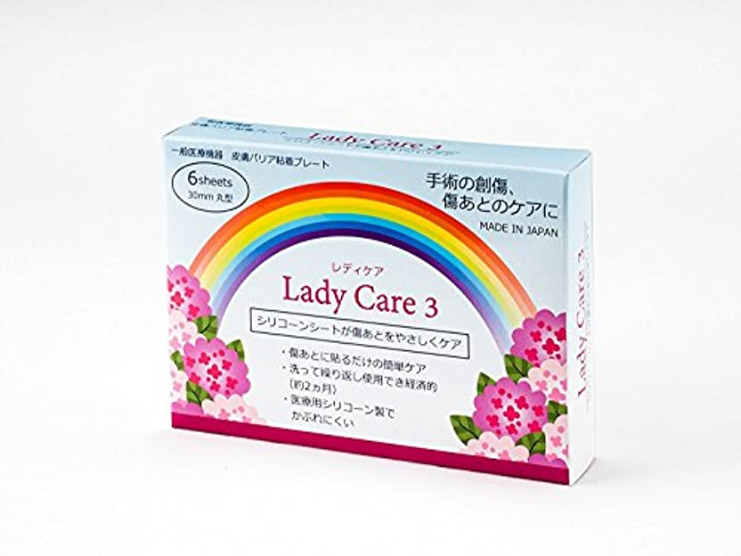 松姿を消す人工ギネマム Lady Care3 レディケア3 【直径3cm】 6枚入り 術後
