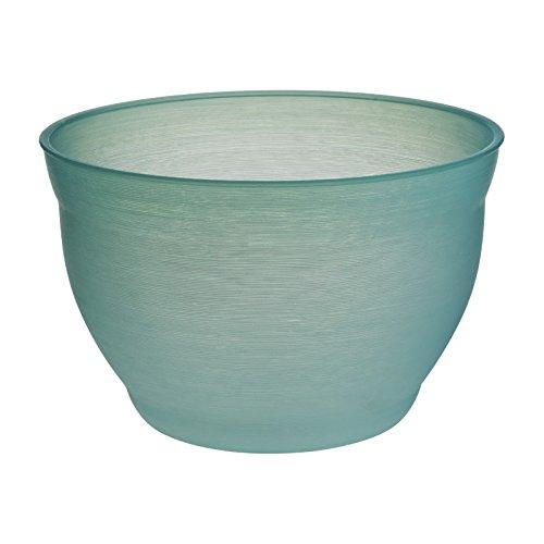 スドー 金魚の小鉢 そーだ