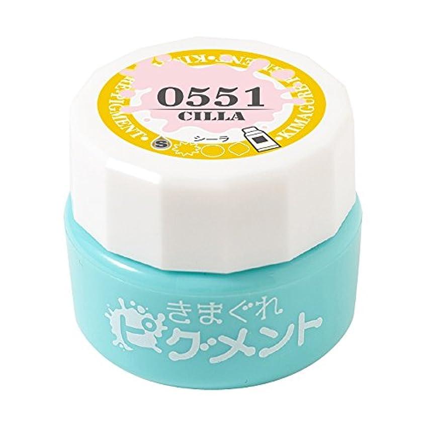 Bettygel きまぐれピグメント シーラ QYJ-0551 4g UV/LED対応
