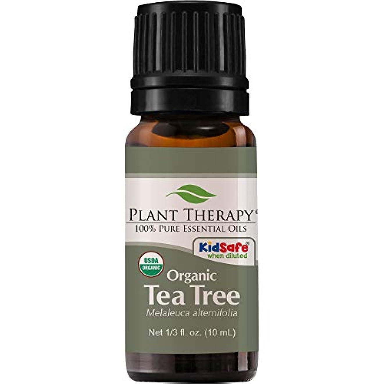 熟したメロドラマ曇ったPlant Therapy Essential Oils (プラントセラピー エッセンシャルオイル) オーガニック ティーツリー (メラルーカ) エッセンシャルオイル