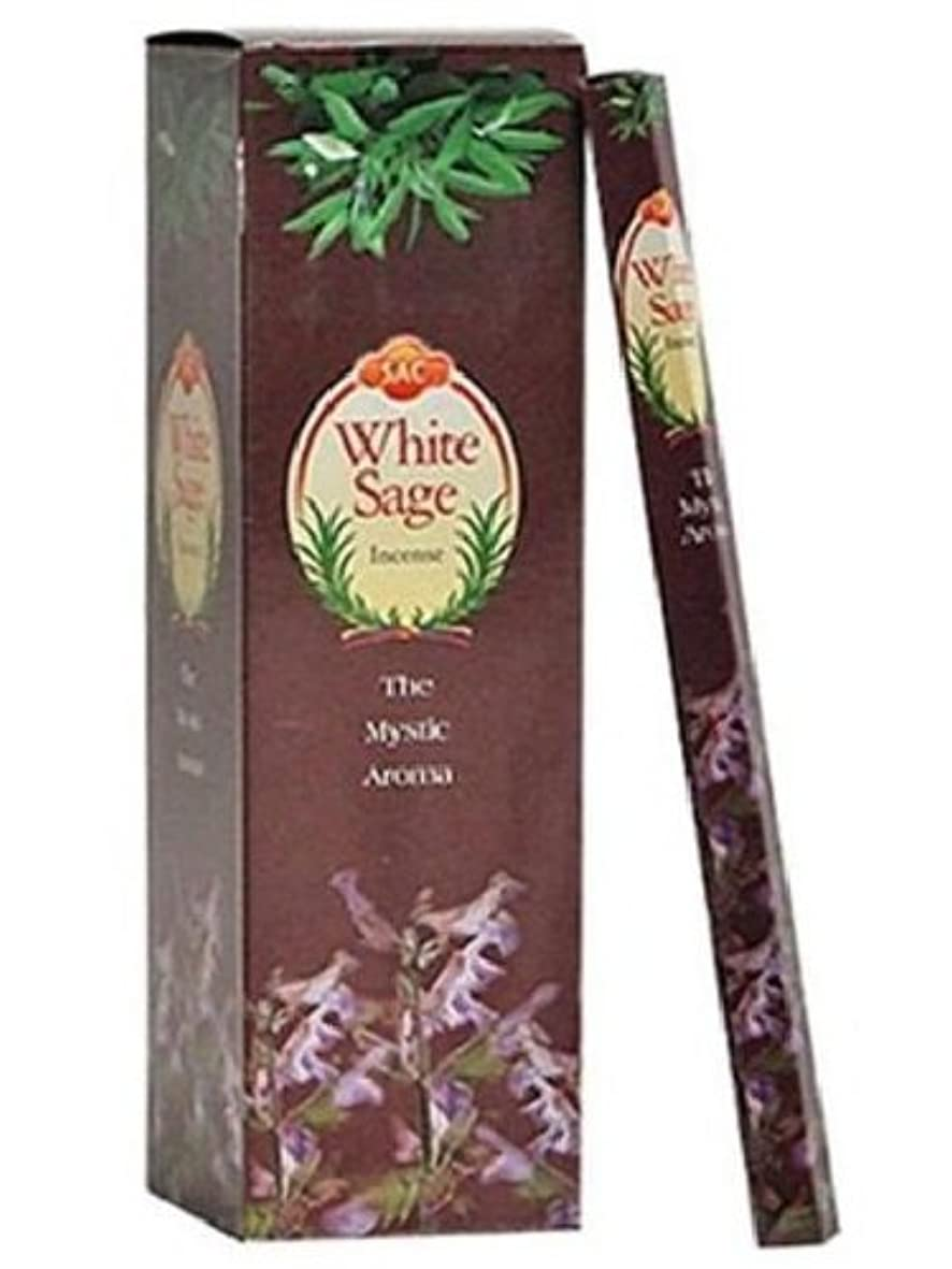 面シャトルストレスJBJ Sac White Sage Incense, 120-Sticks by JBJ [並行輸入品]