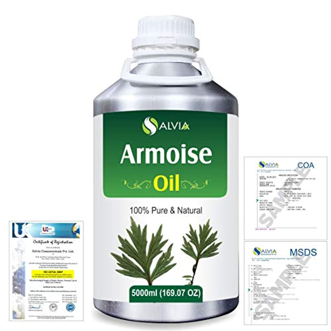 マイコンコミュニティ方向Armoise (Artimisia alba) 100% Natural Pure Essential Oil 5000ml/169fl.oz.