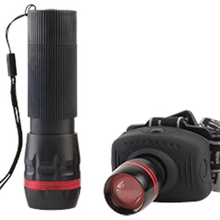 四分円他のバンドで排気Rayz Flashlight And Head lamp Combo Pack [DB8-HLFLRX-32] by Promier Products Inc