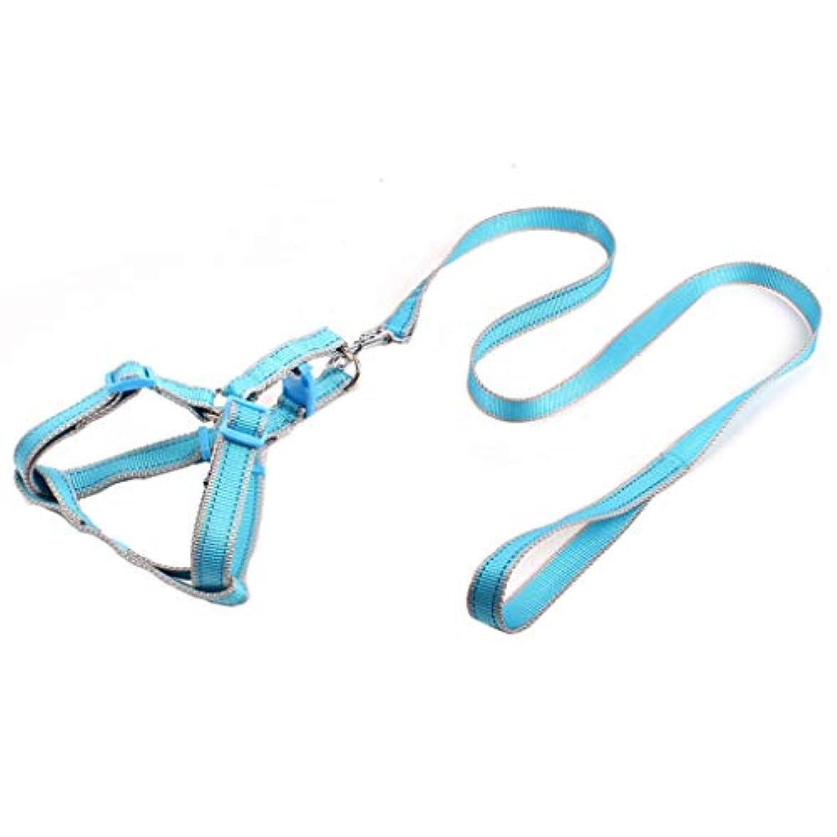 クラック和解する等トラクションロープ、ペットナイロンリーシュと犬の胸のストラップ (色 : 青, サイズ さいず : S s)