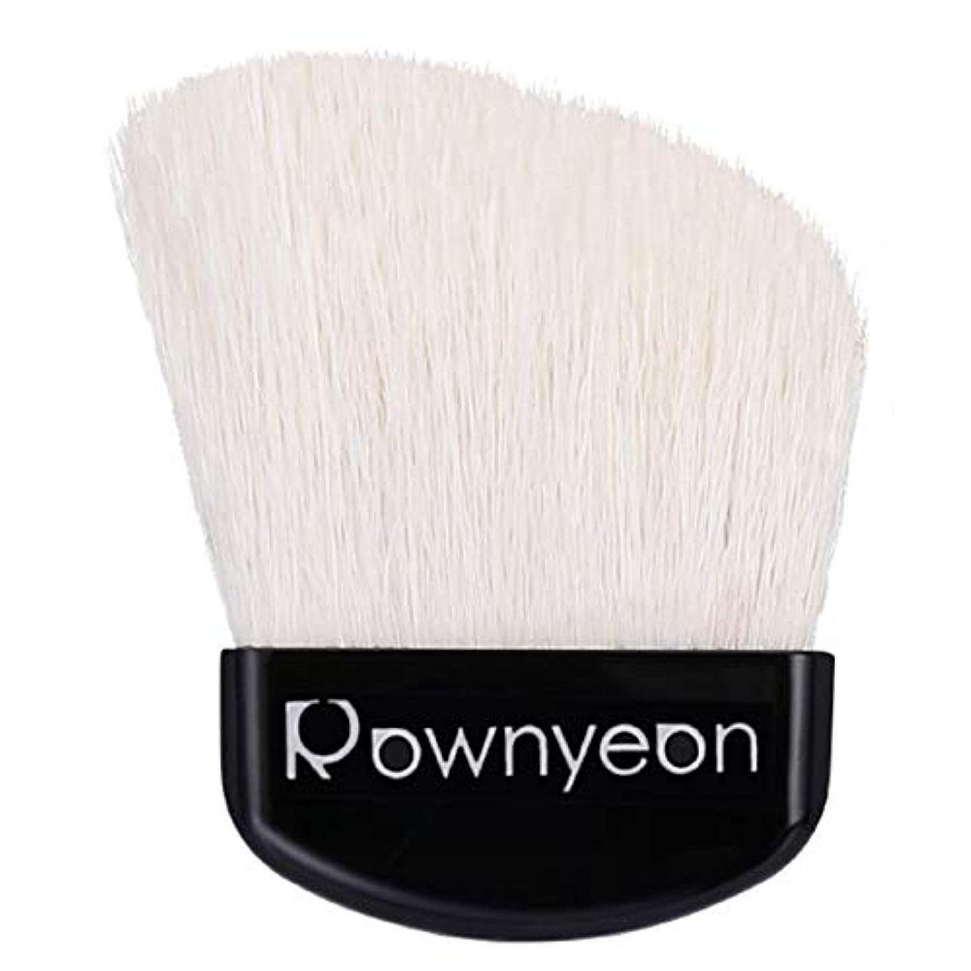免疫するミシン金属Rownyeon チークブラシ 携帯用 100%天然毛 ミニ パクトイン フェースブラシ パウダーブラシ 扇型 携帯便利 メイク直し 単品 収納ケース付き プレゼント ギフト