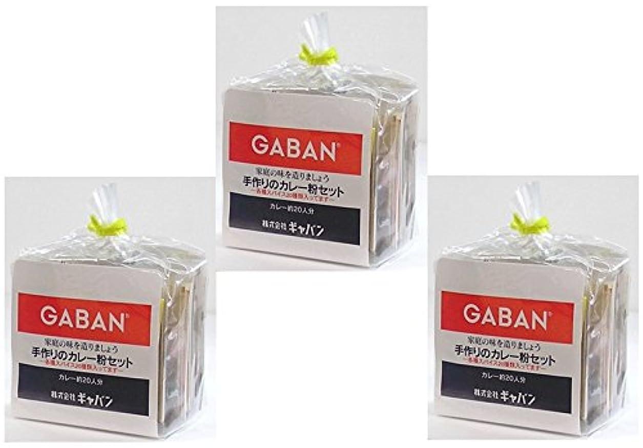 シニス省略充電GABAN 手作りカレー粉セット  100g×3袋