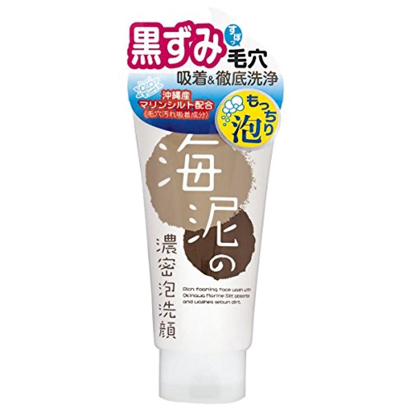 一人で整理するその間リアルトライ 海泥の濃密泡洗顔120g