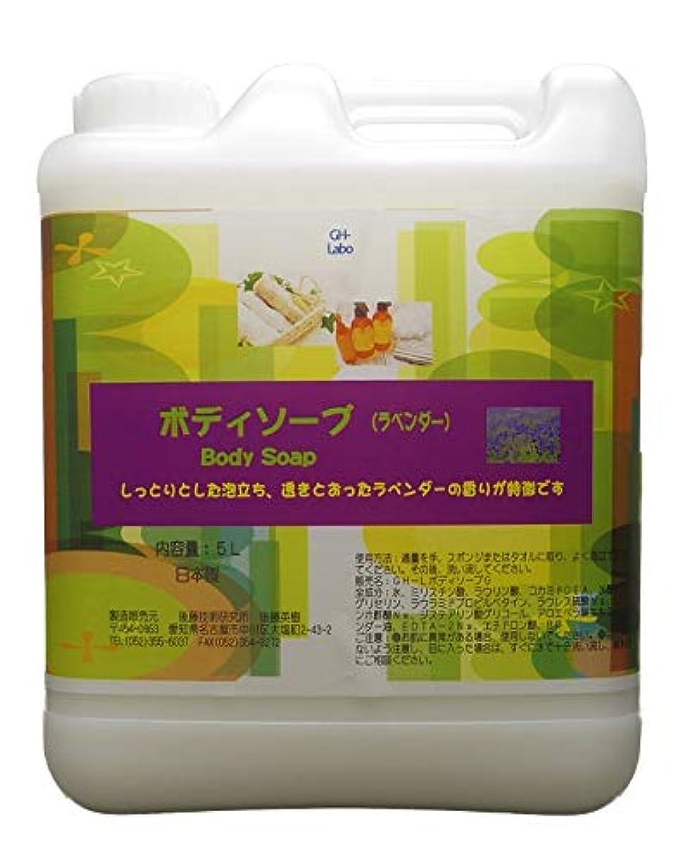 中央女将金額GH-Labo 業務用ボディソープ ラベンダーの香り 5L