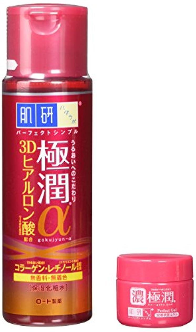 ジェット簡略化する傭兵ロート製薬 肌研 極潤α 化粧水 企画品 170ml