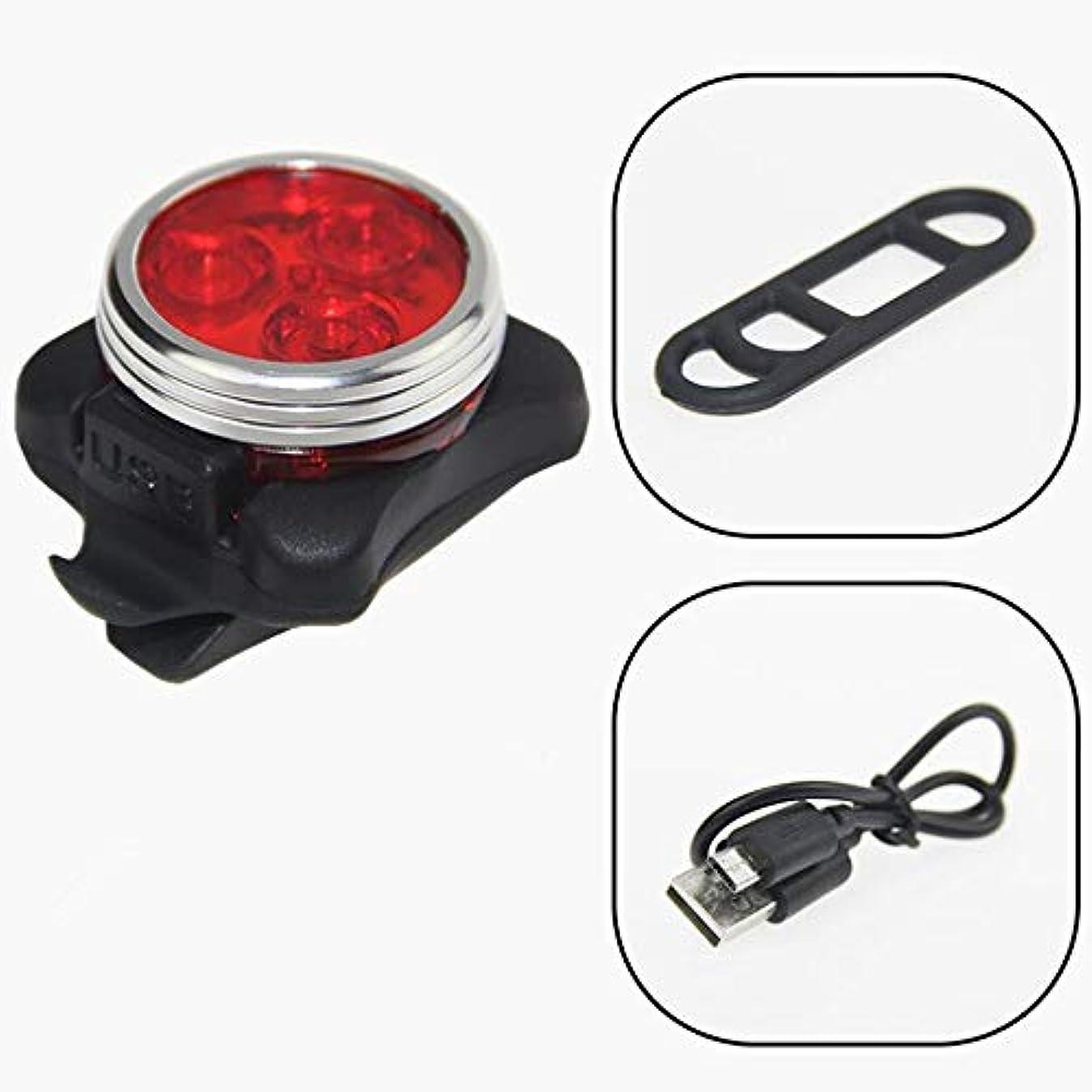 すり減る補償交流する充電式自転車ライト バイクライトドライブリア250ルーメン自転車テールライト (Color : Red)
