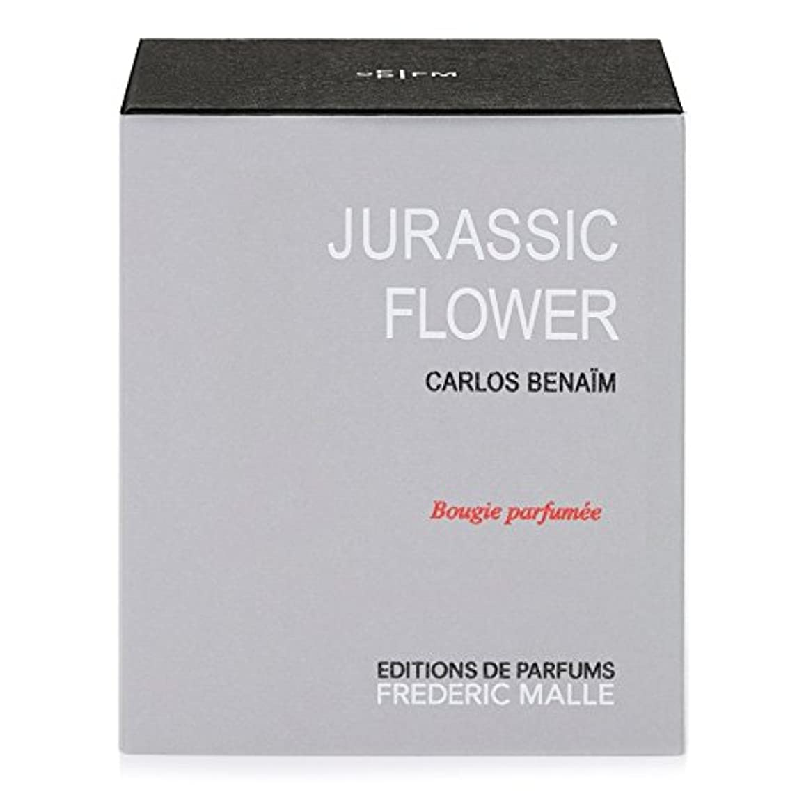 Frederic Malle Jurassic Flower Scented Candle 220g (Pack of 4) - フレデリック?マルジュラ紀の花の香りのキャンドル220グラム x4 [並行輸入品]