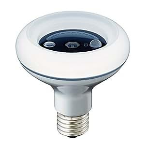 ドウシシャ イオン発生機 LED電球 40W相当 昼白色 人感センサー付 ION-40NHS  口金直径26mm