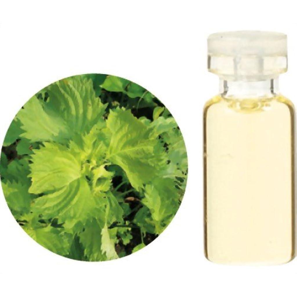 洞察力吸収するスナップ生活の木 Herbal Life 和精油 紫蘇 1ml