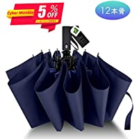 Agedate 折りたたみ傘 自動開閉 頑丈な12本骨 大きい メンズ傘 Teflon加工 超撥水 210T高強度グラスファイバー 耐強風 傘ケース付き (ブルー)