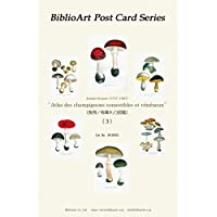BiblioArt Post Card Series 「食用/有毒キノコ図鑑(1864)」(3) 6枚セット(解説付き)