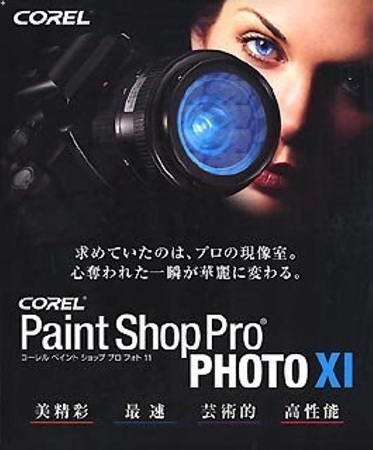 演じる教育学目指すPaint Shop Pro PHOTO XI 通常版