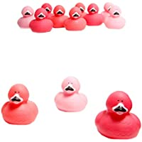 Fun Express Pink Flamingo Rubber Ducks 2 Lx2 Wx2 1/2 T (1-Pack of 12)